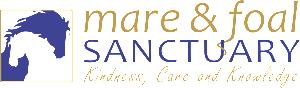 Long Logo Transparent Background